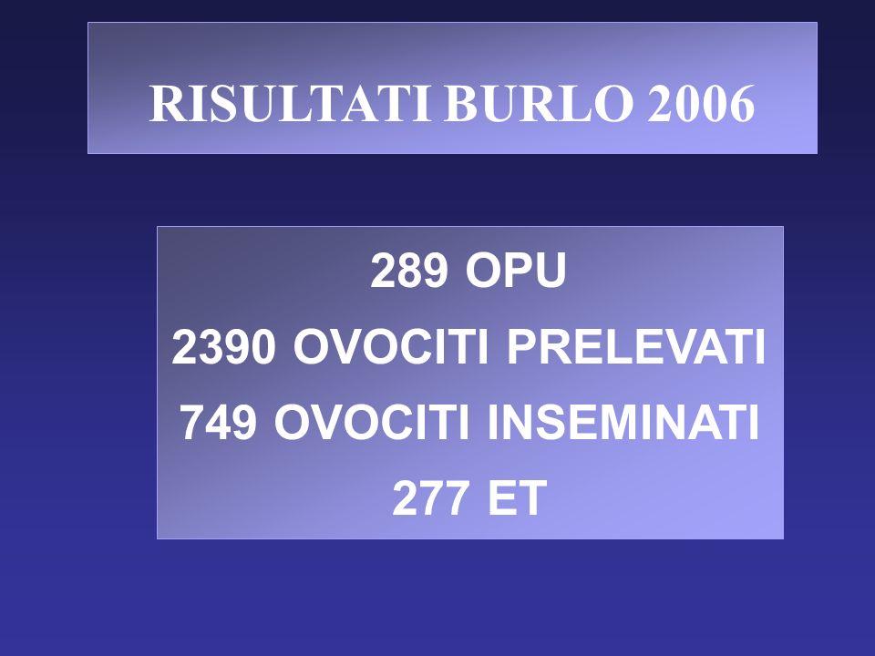 RISULTATI BURLO 2006 289 OPU 2390 OVOCITI PRELEVATI 749 OVOCITI INSEMINATI 277 ET
