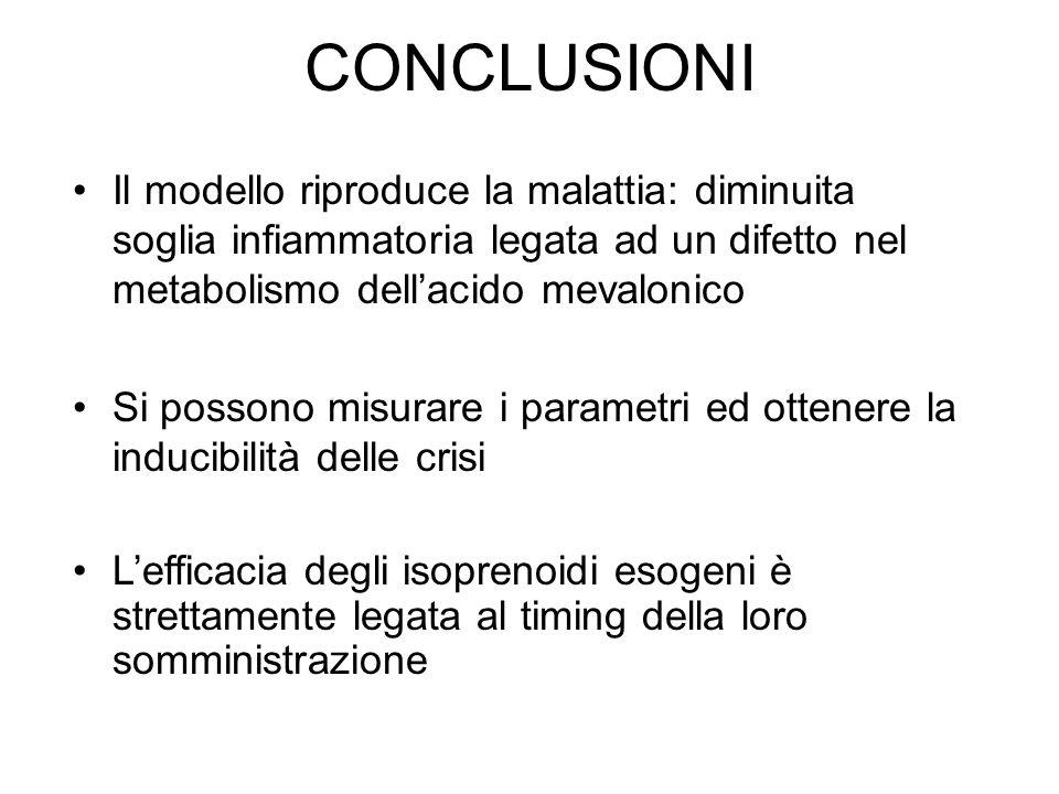 CONCLUSIONI Il modello riproduce la malattia: diminuita soglia infiammatoria legata ad un difetto nel metabolismo dellacido mevalonico Si possono misu