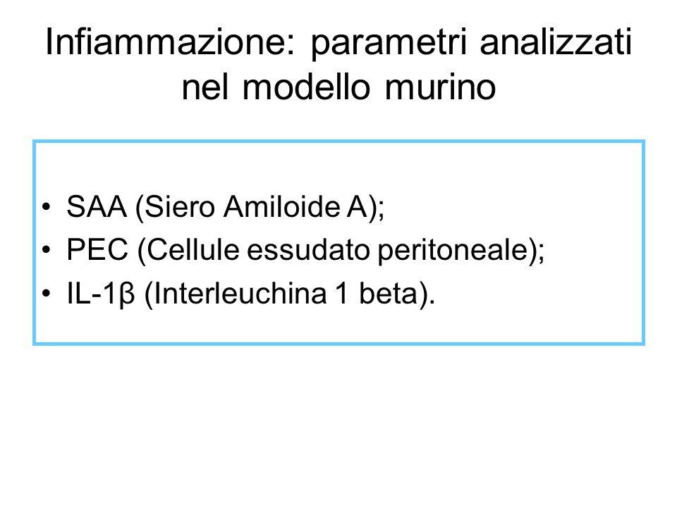 Infiammazione: parametri analizzati nel modello murino SAA (Siero Amiloide A); PEC (Cellule essudato peritoneale); IL-1β (Interleuchina 1 beta).