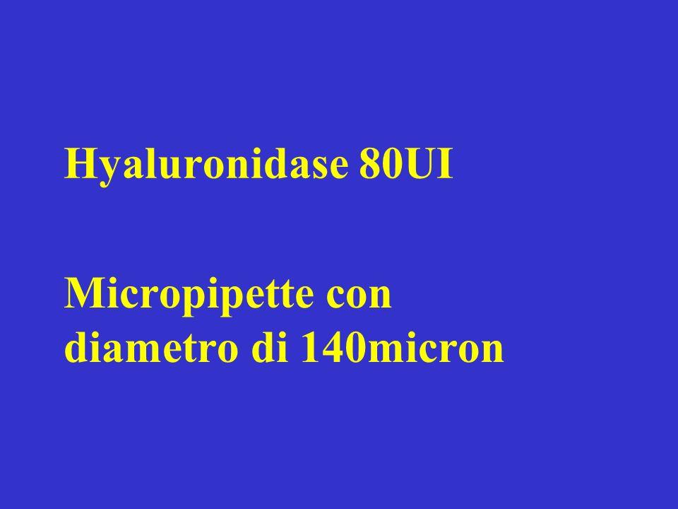 Hyaluronidase 80UI Micropipette con diametro di 140micron