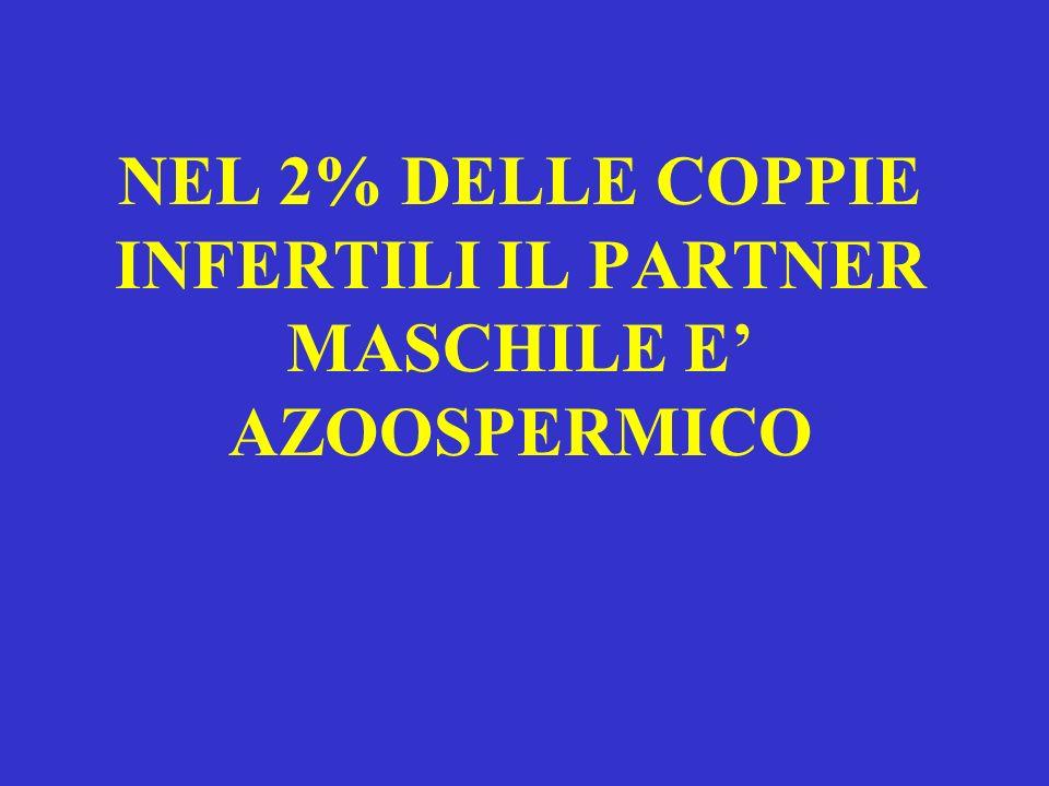 NEL 2% DELLE COPPIE INFERTILI IL PARTNER MASCHILE E AZOOSPERMICO