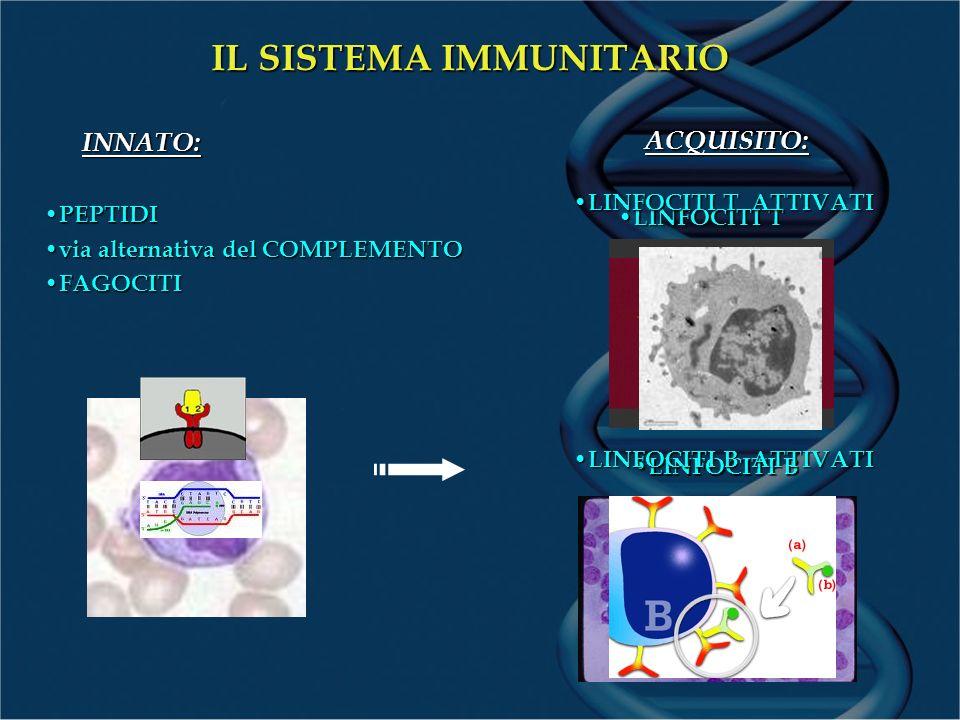 prostaglandine IL SISTEMA IMMUNITARIO E LA GRAVIDANZA PARTO PRETERMINE