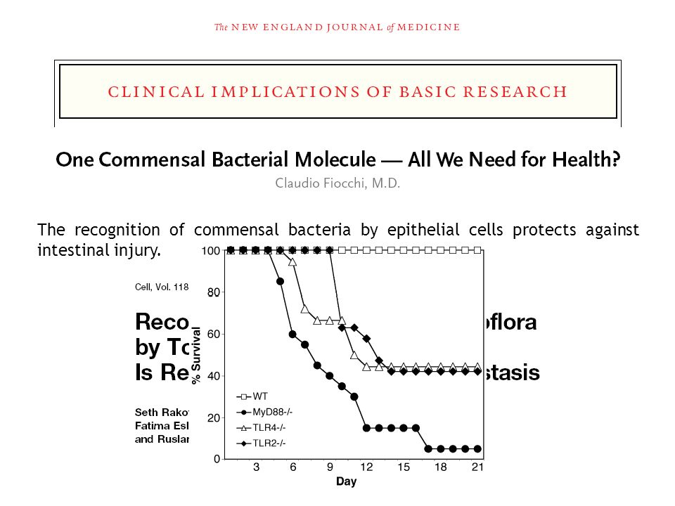 The recognition of commensal bacteria by epithelial cells protects against intestinal injury.
