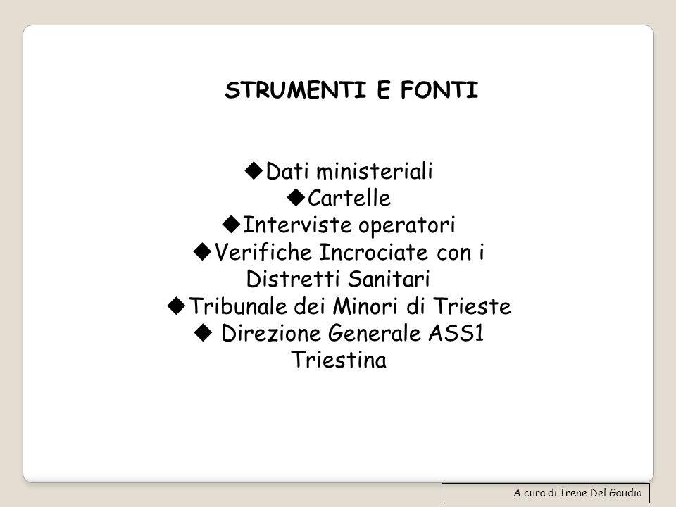 Dati ministeriali Cartelle Interviste operatori Verifiche Incrociate con i Distretti Sanitari Tribunale dei Minori di Trieste Direzione Generale ASS1