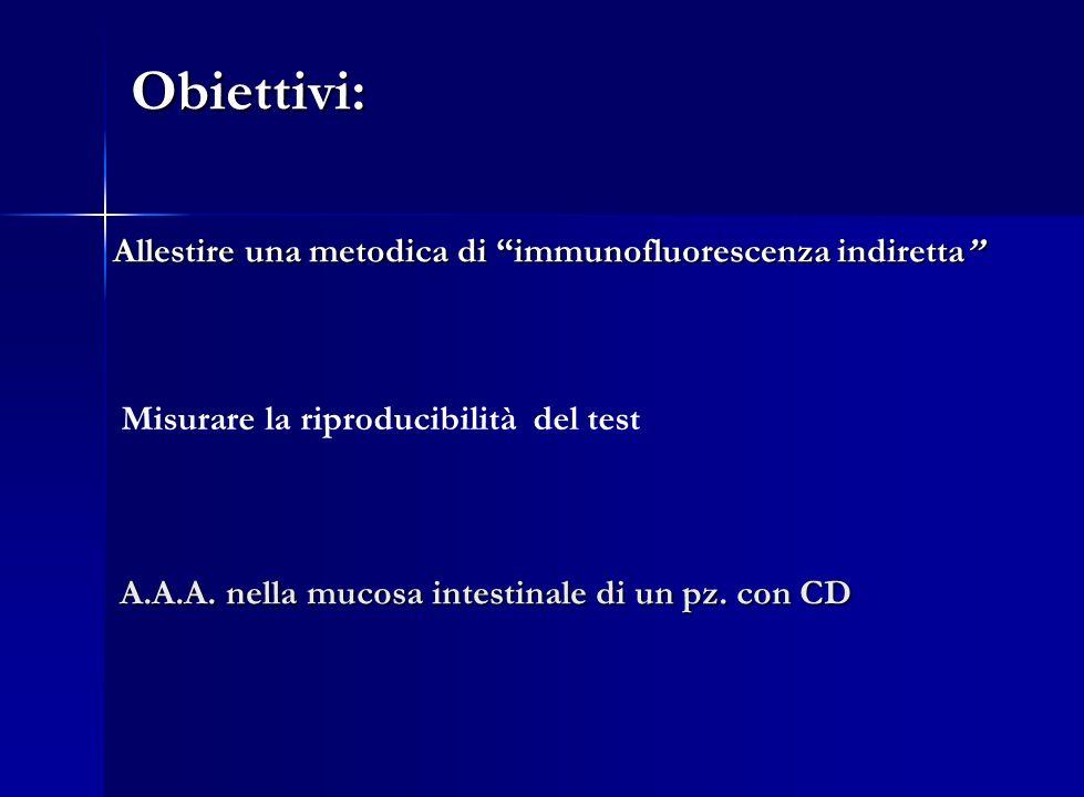 Obiettivi: Obiettivi: Allestire una metodica di immunofluorescenza indiretta Allestire una metodica di immunofluorescenza indiretta Misurare la riprod