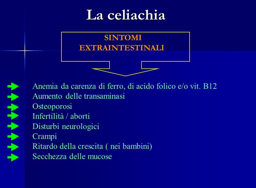 La celiachia SINTOMI EXTRAINTESTINALI Anemia da carenza di ferro, di acido folico e/o vit. B12 Aumento delle transaminasi Osteoporosi Infertilità / ab