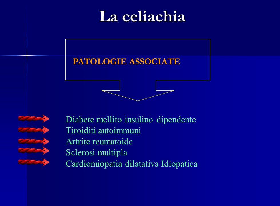 La celiachia PATOLOGIE ASSOCIATE Diabete mellito insulino dipendente Tiroiditi autoimmuni Artrite reumatoide Sclerosi multipla Cardiomiopatia dilatati