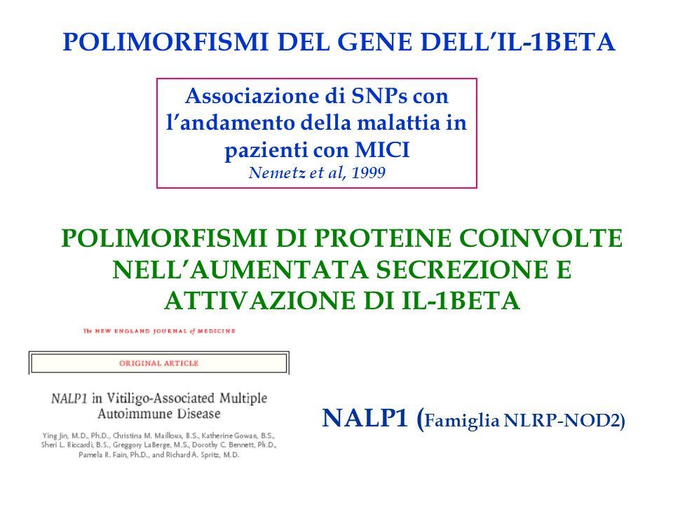 POLIMORFISMI DEL GENE DELLIL-1BETA Associazione di SNPs con landamento della malattia in pazienti con MICI Nemetz et al, 1999 POLIMORFISMI DI PROTEINE