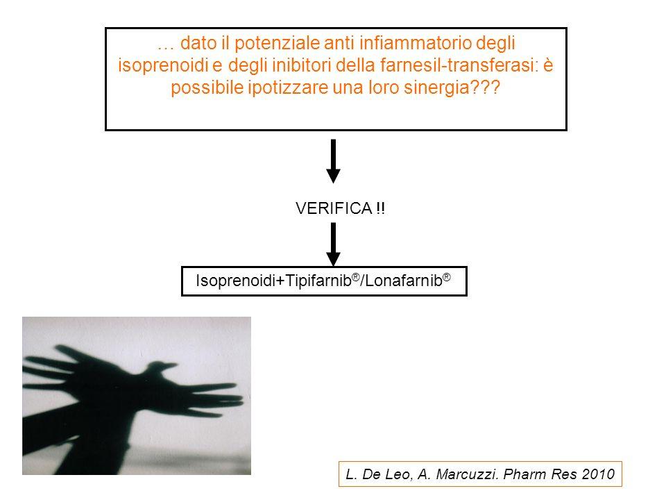 … dato il potenziale anti infiammatorio degli isoprenoidi e degli inibitori della farnesil-transferasi: è possibile ipotizzare una loro sinergia??? VE