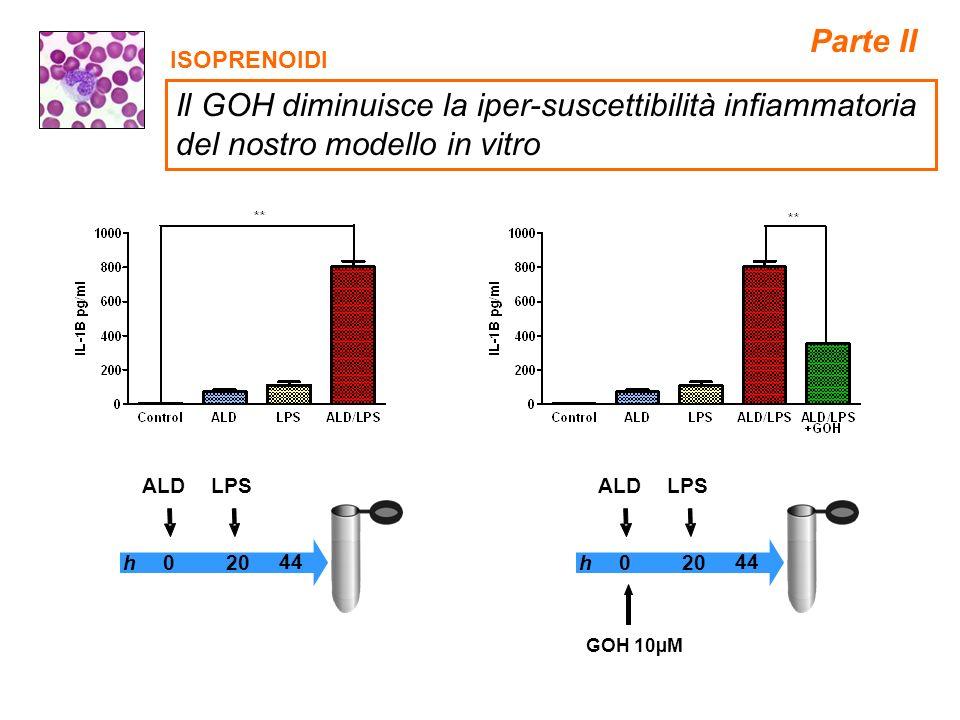 ISOPRENOIDI 0 44 h20 LPSALD 0 44 h20 LPSALD GOH 10µM Parte II Il GOH diminuisce la iper-suscettibilità infiammatoria del nostro modello in vitro