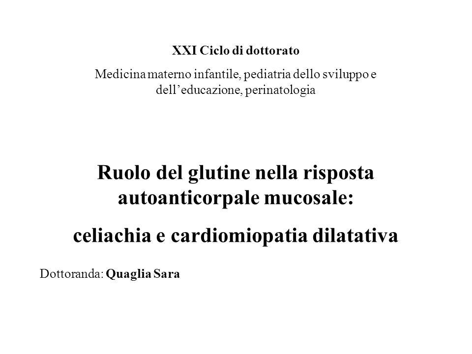 XXI Ciclo di dottorato Medicina materno infantile, pediatria dello sviluppo e delleducazione, perinatologia Ruolo del glutine nella risposta autoantic