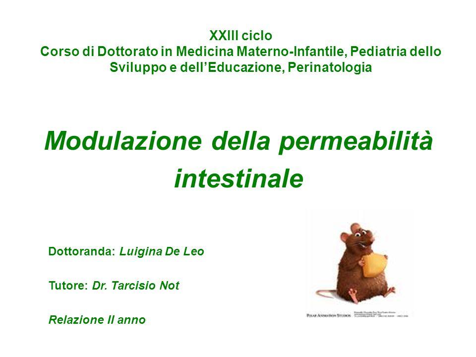 Modulazione della permeabilità intestinale XXIII ciclo Corso di Dottorato in Medicina Materno-Infantile, Pediatria dello Sviluppo e dellEducazione, Pe