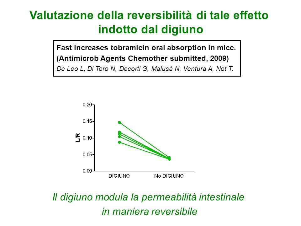 Il digiuno modula la permeabilità intestinale in maniera reversibile Valutazione della reversibilità di tale effetto indotto dal digiuno Fast increase