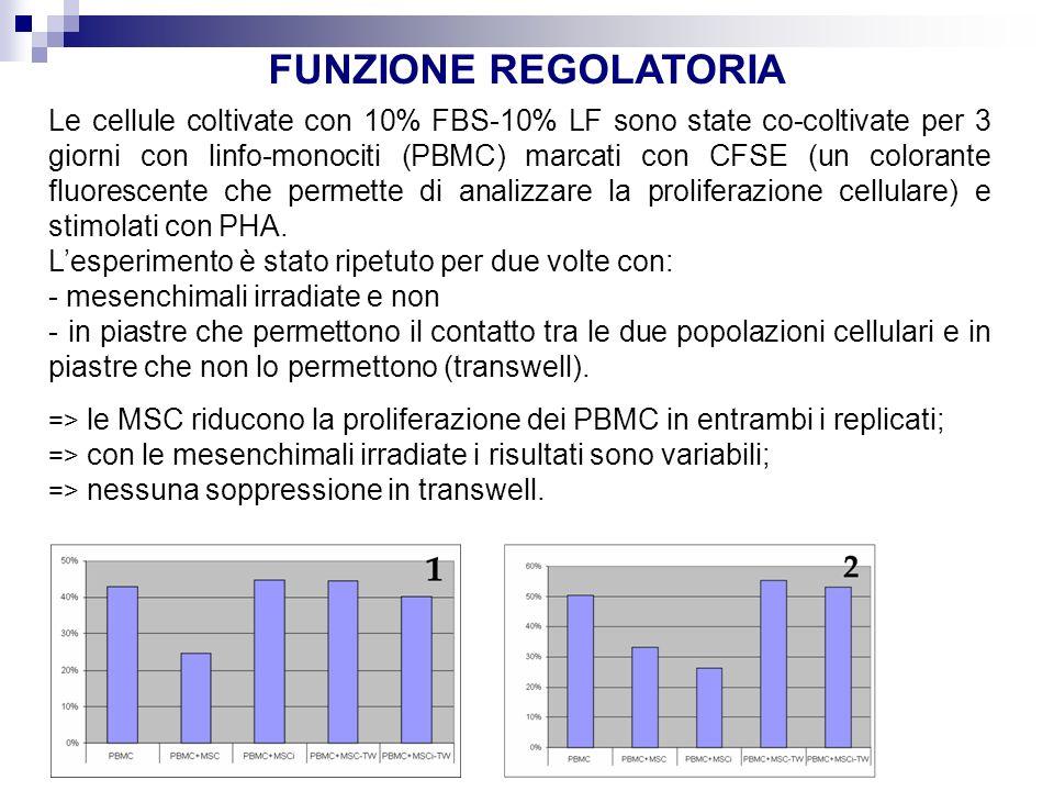 FUNZIONE REGOLATORIA Le cellule coltivate con 10% FBS-10% LF sono state co-coltivate per 3 giorni con linfo-monociti (PBMC) marcati con CFSE (un colorante fluorescente che permette di analizzare la proliferazione cellulare) e stimolati con PHA.