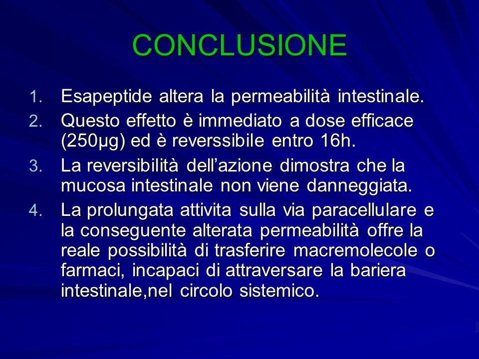 CONCLUSIONE 1. Esapeptide altera la permeabilità intestinale. 2. Questo effetto è immediato a dose efficace (250µg) ed è reverssibile entro 16h. 3. La