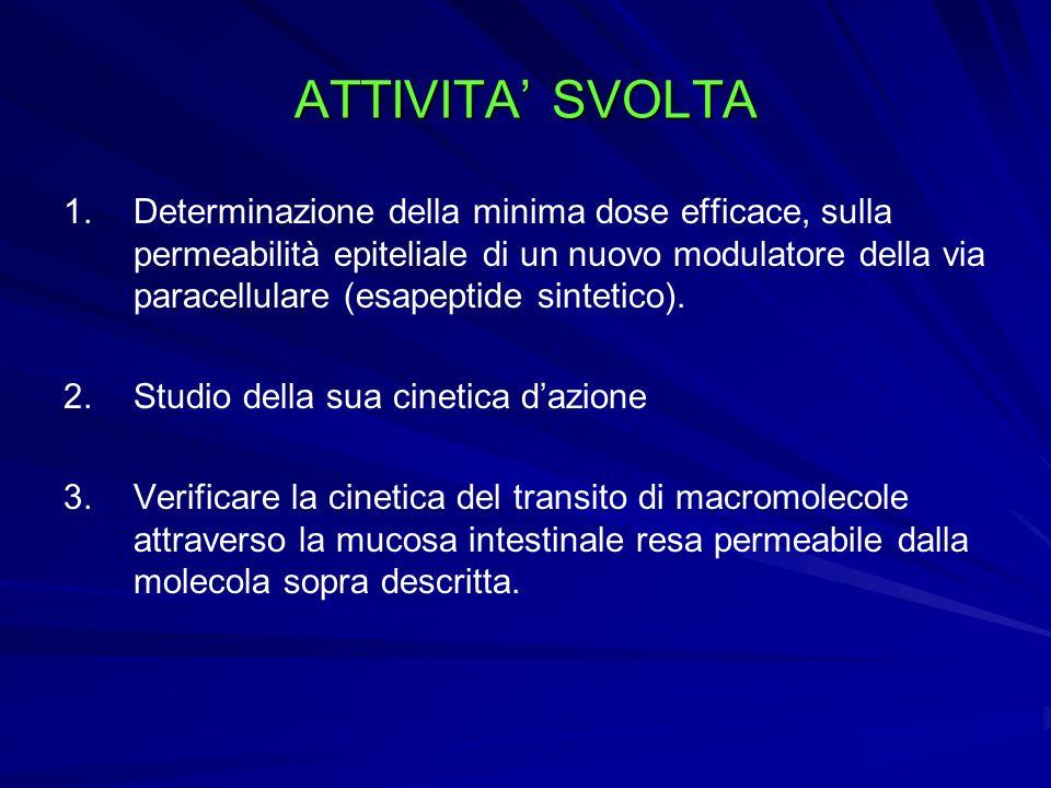 ATTIVITA SVOLTA 1. 1.Determinazione della minima dose efficace, sulla permeabilità epiteliale di un nuovo modulatore della via paracellulare (esapepti