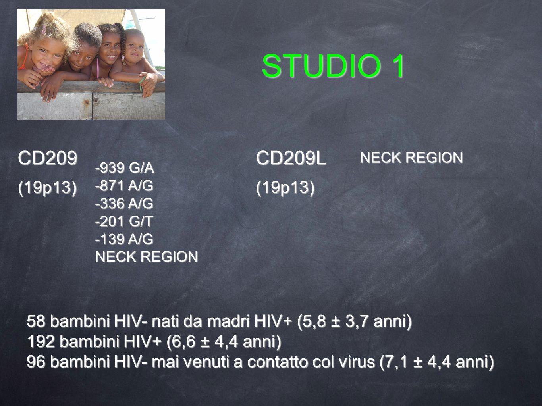 STUDIO 1 -939 G/A -871 A/G -336 A/G -201 G/T -139 A/G NECK REGION 58 bambini HIV- nati da madri HIV+ (5,8 ± 3,7 anni) 192 bambini HIV+ (6,6 ± 4,4 anni