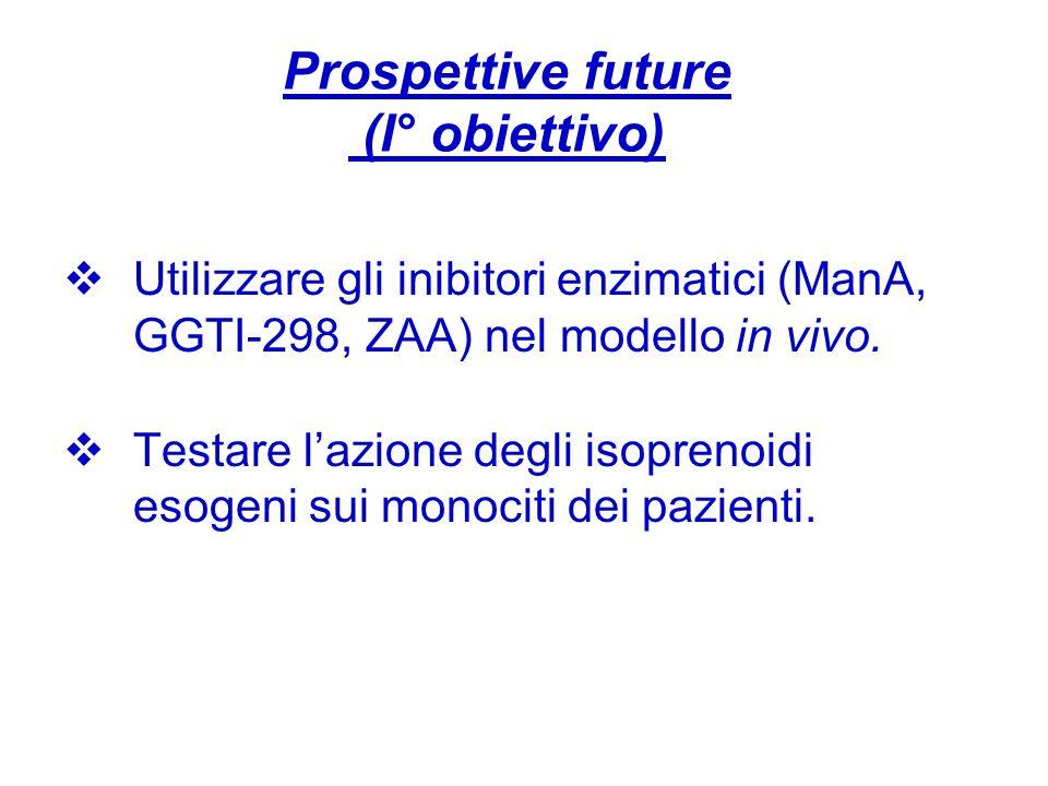 Prospettive future (I° obiettivo) Utilizzare gli inibitori enzimatici (ManA, GGTI-298, ZAA) nel modello in vivo. Testare lazione degli isoprenoidi eso