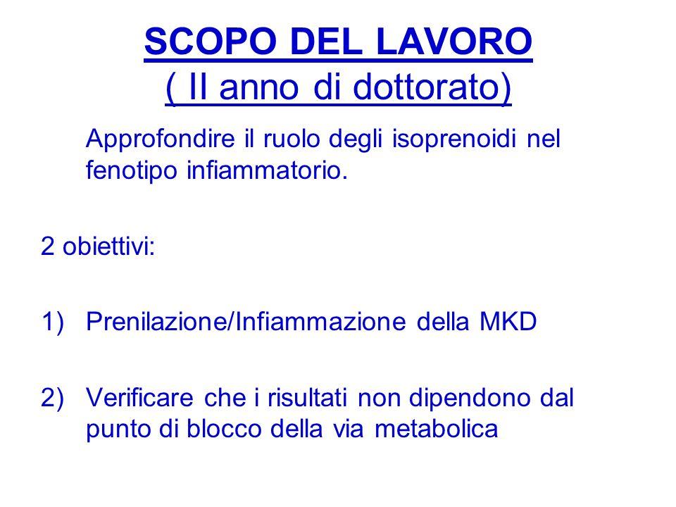 SCOPO DEL LAVORO ( II anno di dottorato) Approfondire il ruolo degli isoprenoidi nel fenotipo infiammatorio. 2 obiettivi: 1)Prenilazione/Infiammazione