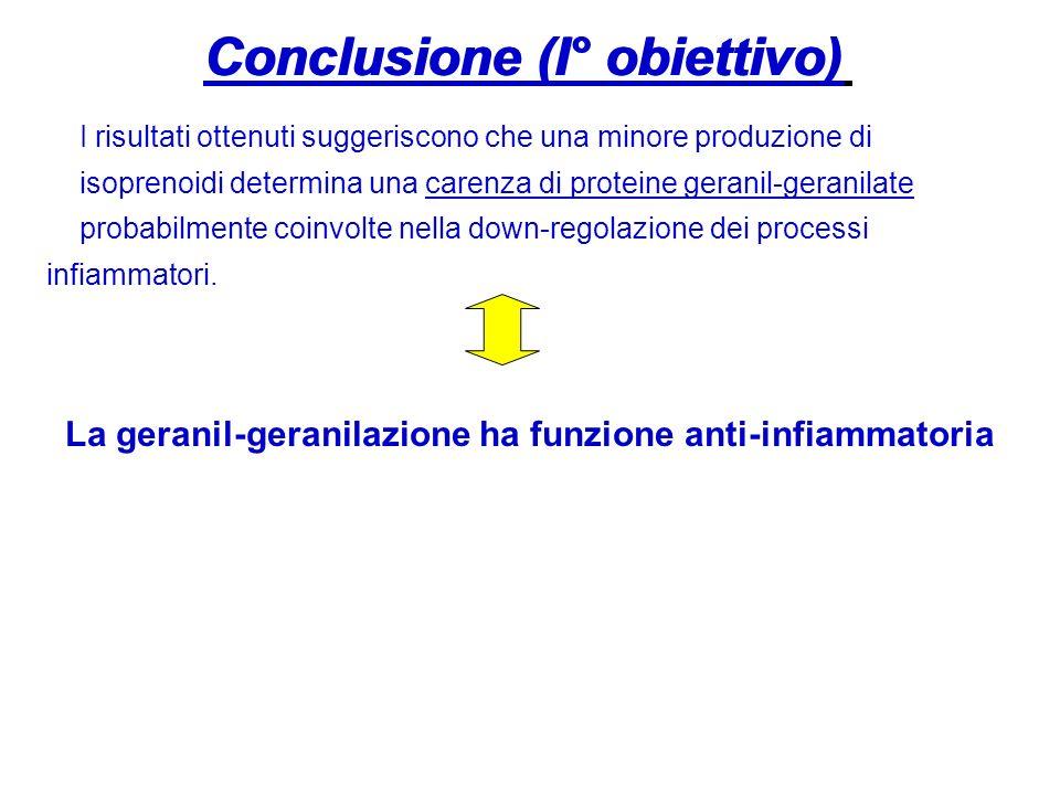 Conclusione (I° obiettivo) I risultati ottenuti suggeriscono che una minore produzione di isoprenoidi determina una carenza di proteine geranil-gerani