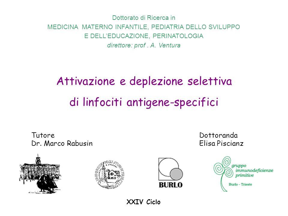 Attivazione e deplezione selettiva di linfociti antigene-specifici Dottoranda Elisa Piscianz Tutore Dr. Marco Rabusin Dottorato di Ricerca in MEDICINA