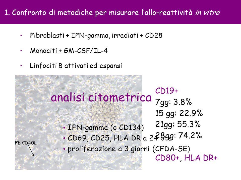 Fb CD40L Monociti + GM-CSF/IL-4 1. Confronto di metodiche per misurare lallo-reattività in vitro CD19+ 7gg: 3.8% 15 gg: 22.9% 21gg: 55.3% 28gg: 74.2%