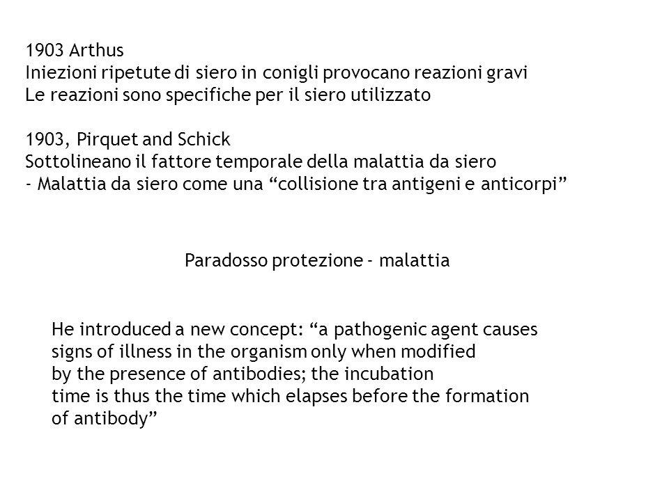1903 Arthus Iniezioni ripetute di siero in conigli provocano reazioni gravi Le reazioni sono specifiche per il siero utilizzato 1903, Pirquet and Schi