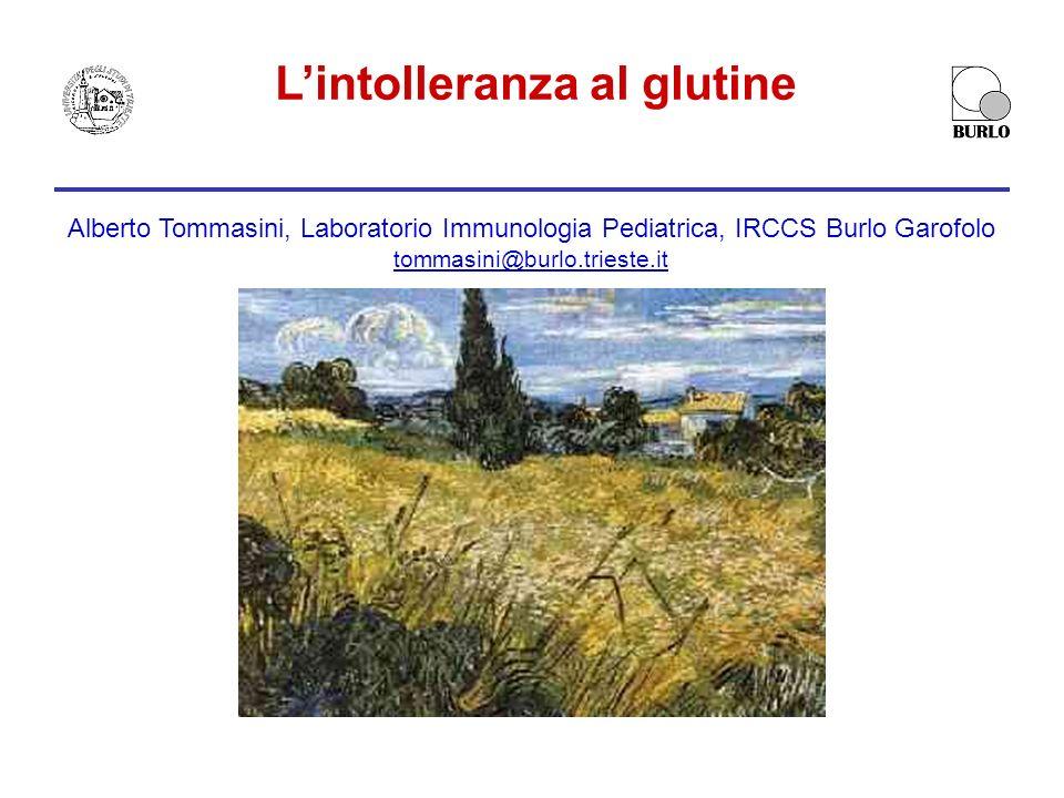 Lintolleranza al glutine Alberto Tommasini, Laboratorio Immunologia Pediatrica, IRCCS Burlo Garofolo tommasini@burlo.trieste.it