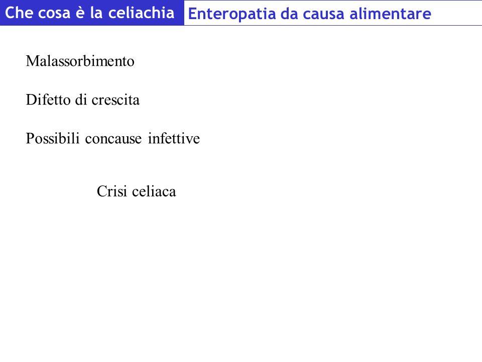 Che cosa è la celiachia Enteropatia da causa alimentare Malassorbimento Difetto di crescita Possibili concause infettive Crisi celiaca