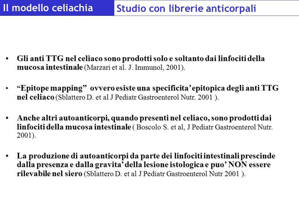 Il modello celiachia Studio con librerie anticorpali Gli anti TTG nel celiaco sono prodotti solo e soltanto dai linfociti della mucosa intestinale (Marzari et al.