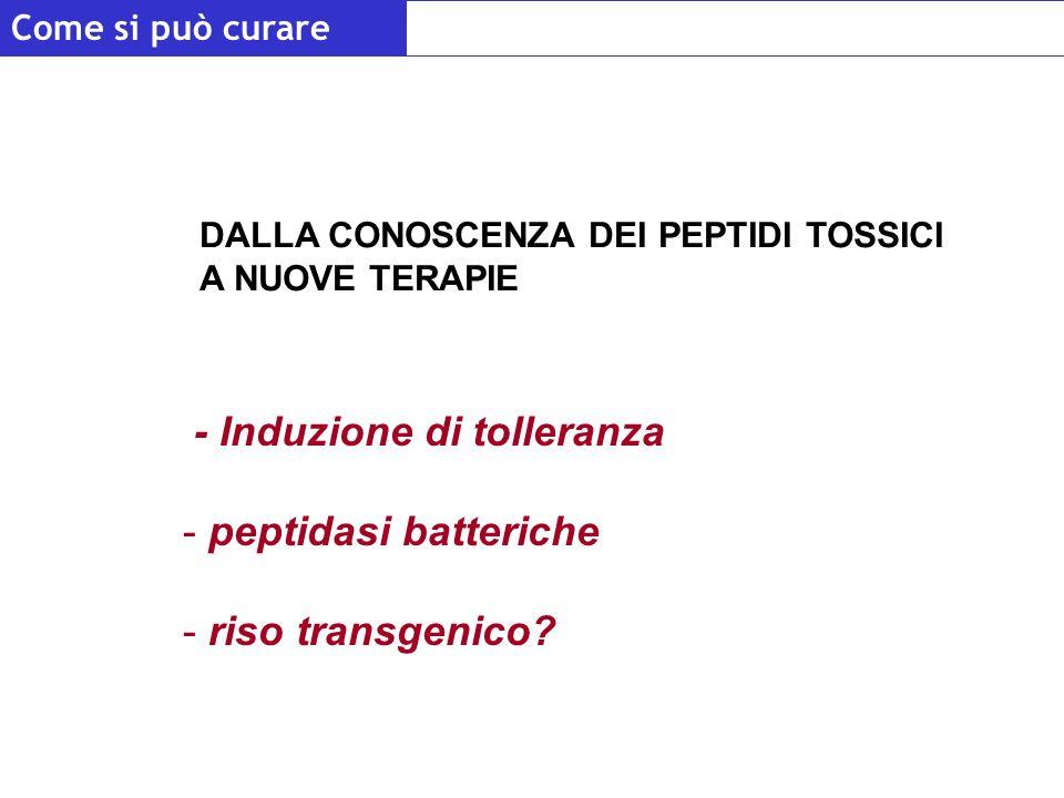 - Induzione di tolleranza - peptidasi batteriche - riso transgenico? DALLA CONOSCENZA DEI PEPTIDI TOSSICI A NUOVE TERAPIE Come si può curare