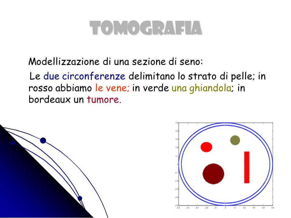 TOMOGRAFIA Modellizzazione di una sezione di seno:: Le due circonferenze delimitano lo strato di pelle; in rosso abbiamo le vene; in verde una ghiandola; in bordeaux un tumore.