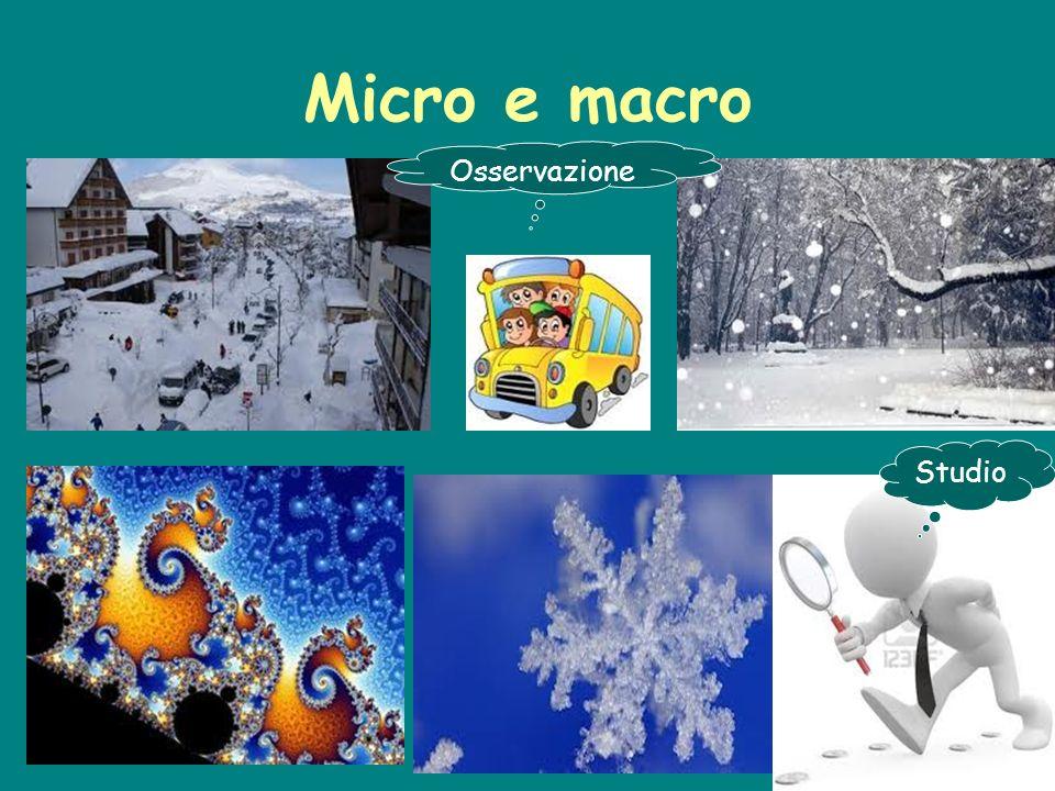 Micro e macro Osservazione Studio