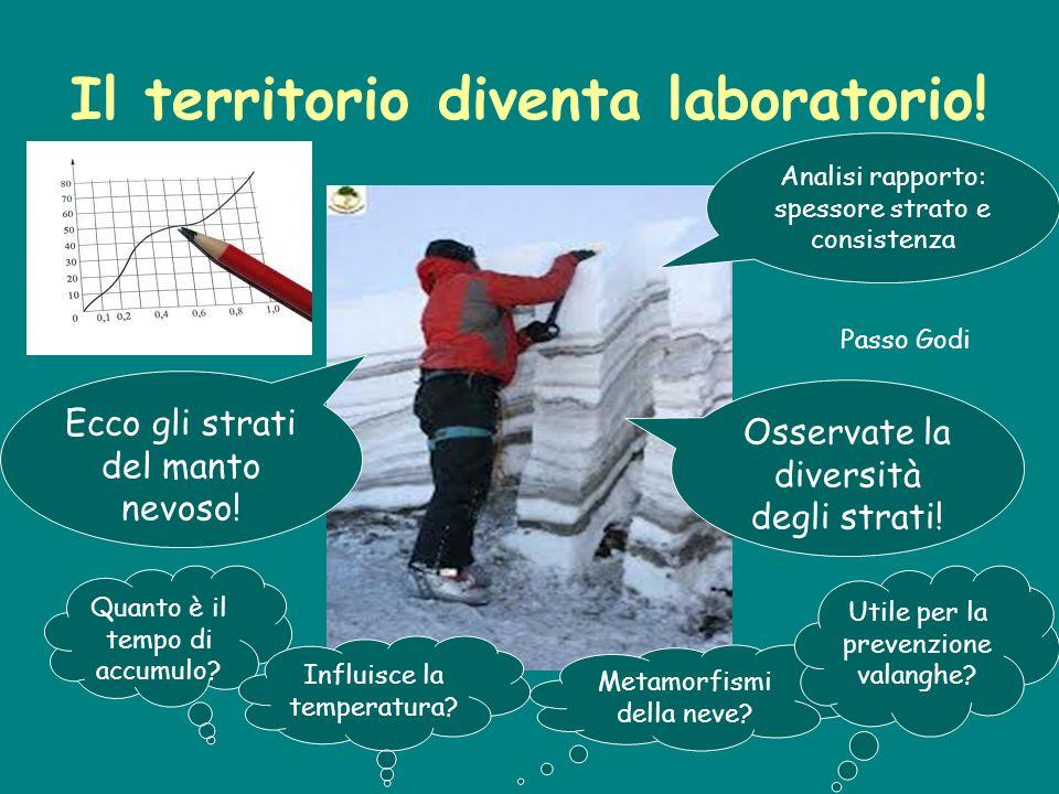 Il territorio diventa laboratorio! Ecco gli strati del manto nevoso! Analisi rapporto: spessore strato e consistenza Osservate la diversità degli stra