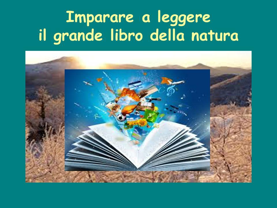 Imparare a leggere il grande libro della natura