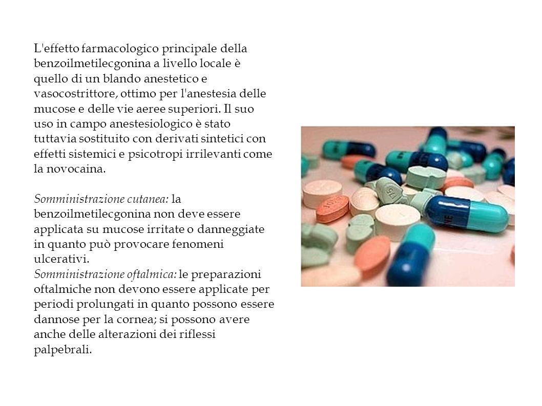 L effetto farmacologico principale della benzoilmetilecgonina a livello locale è quello di un blando anestetico e vasocostrittore, ottimo per l anestesia delle mucose e delle vie aeree superiori.