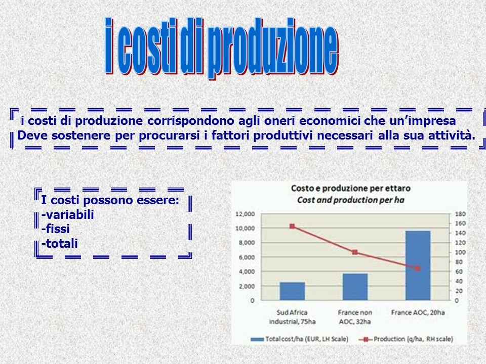 i costi di produzione corrispondono agli oneri economici che unimpresa Deve sostenere per procurarsi i fattori produttivi necessari alla sua attività.