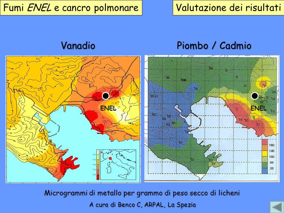 Fumi ENEL e cancro polmonareValutazione dei risultati Vanadio ENEL Piombo / Cadmio ENEL A cura di Benco C, ARPAL, La Spezia Microgrammi di metallo per