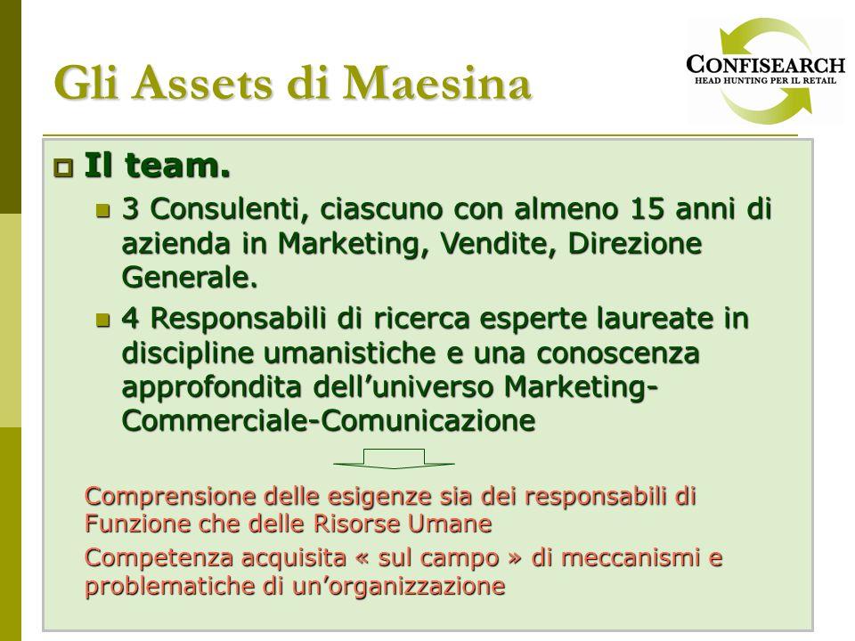 Gli Assets di Maesina Il team. Il team. 3 Consulenti, ciascuno con almeno 15 anni di azienda in Marketing, Vendite, Direzione Generale. 3 Consulenti,