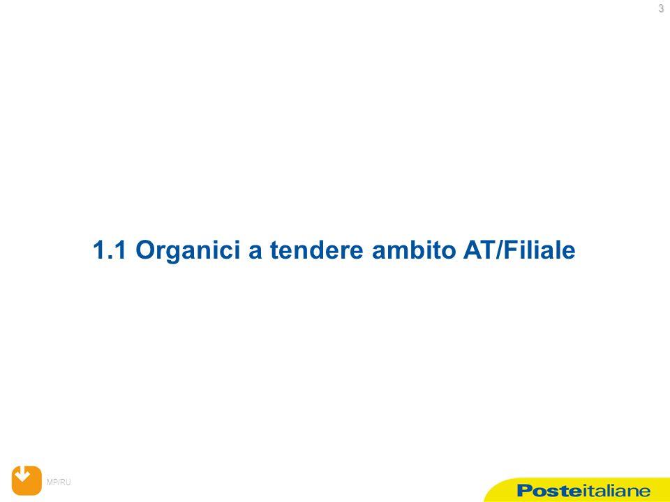 MP/RU 3 1.1 Organici a tendere ambito AT/Filiale