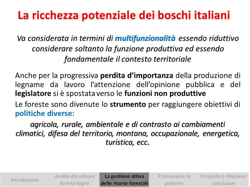 I prodotti legnosi rappresentano solo un terzo del valore economico totale delle foreste italiane.