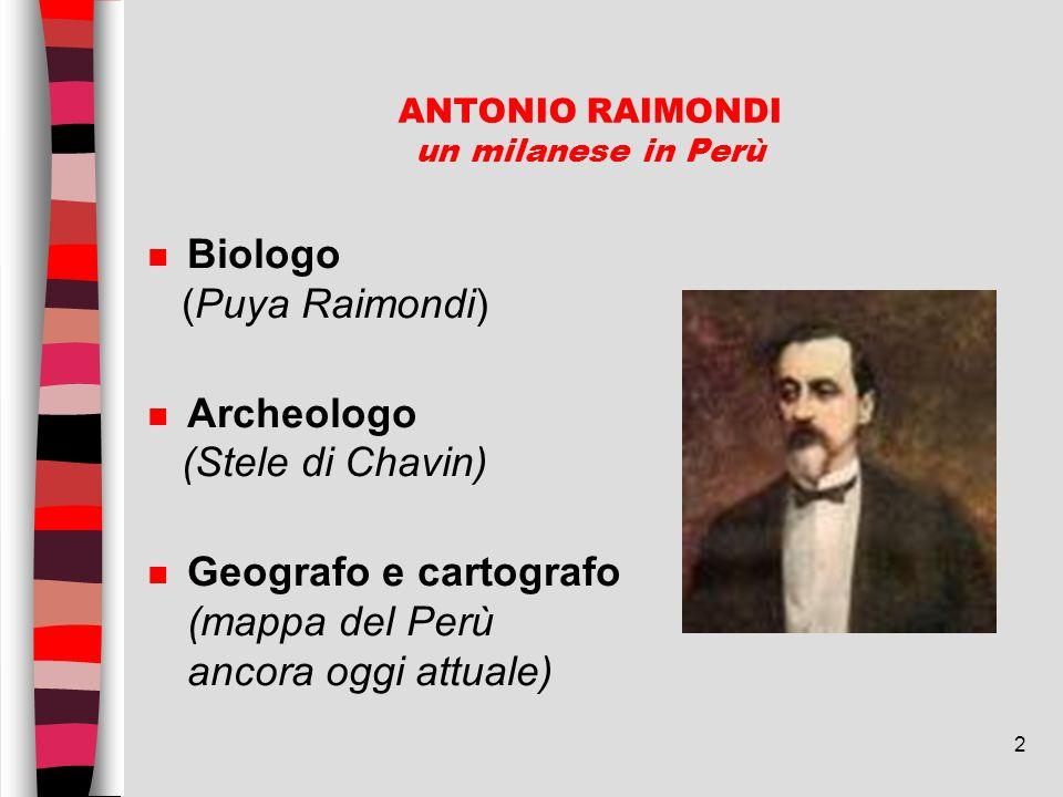 2 ANTONIO RAIMONDI un milanese in Perù n Biologo (Puya Raimondi) n Archeologo (Stele di Chavin) n Geografo e cartografo (mappa del Perù ancora oggi at