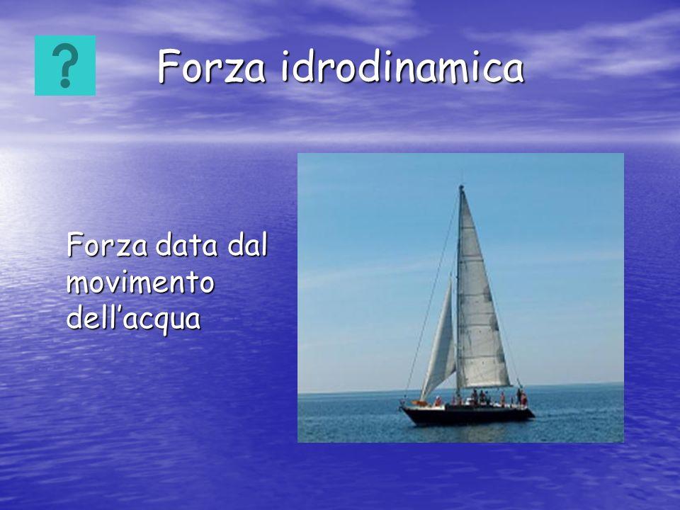 Forza idrodinamica Forza data dal movimento dellacqua