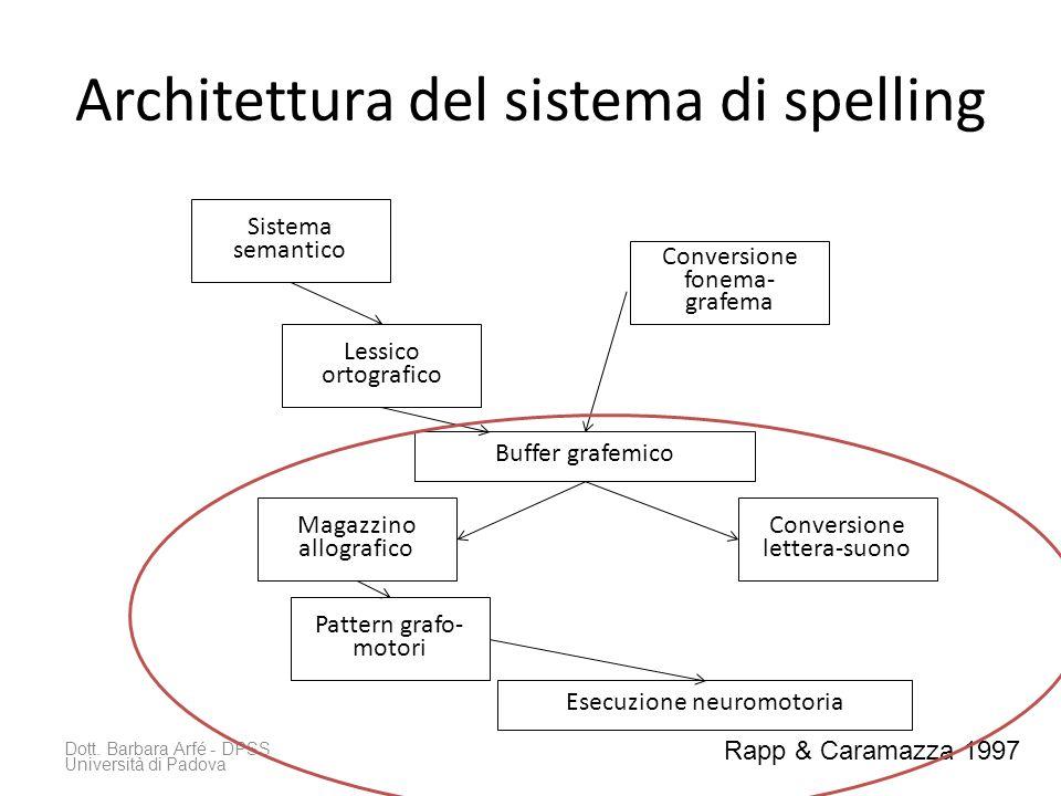 Architettura del sistema di spelling Dott. Barbara Arfé - DPSS Università di Padova Sistema semantico Lessico ortografico Conversione fonema- grafema