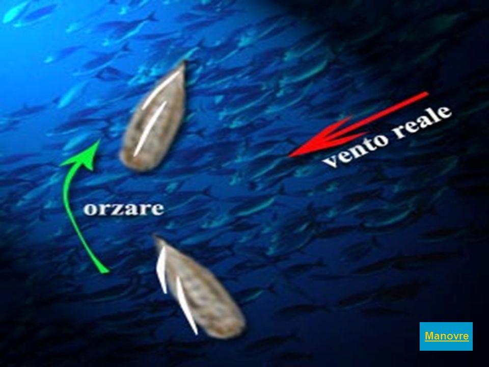 Il mare gioca con gli scogli e li accarezza dolcemente oppure si abbatte su di loro con forza e li plasma a suo volere …