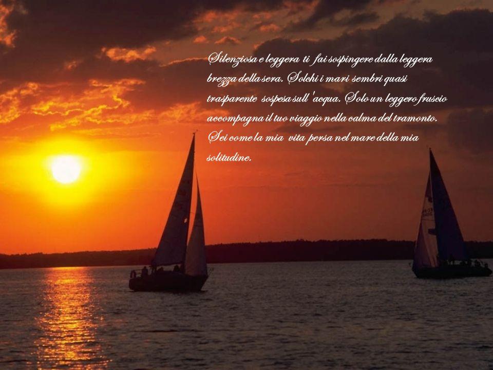 Silenziosa e leggera ti fai sospingere dalla leggera brezza della sera. Solchi i mari sembri quasi trasparente sospesa sull'acqua. Solo un leggero fru