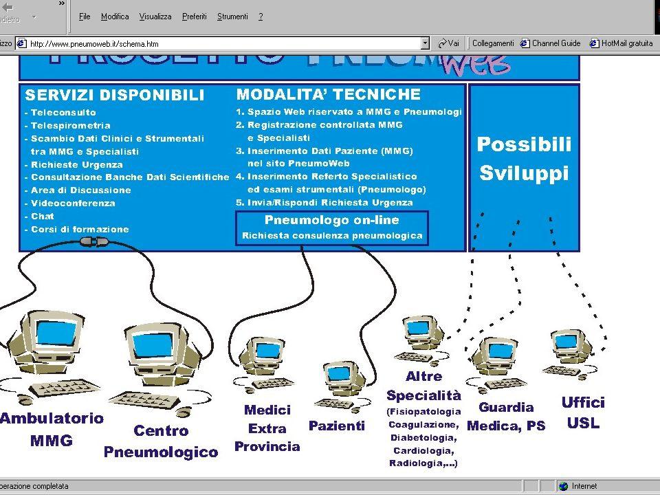 Specialista Medico di MMG Sospetto diagnostico Valutazione PEF Spirometria (?) Trattamento riacutizzazioni lievi- moderate Educazione paziente Elimina