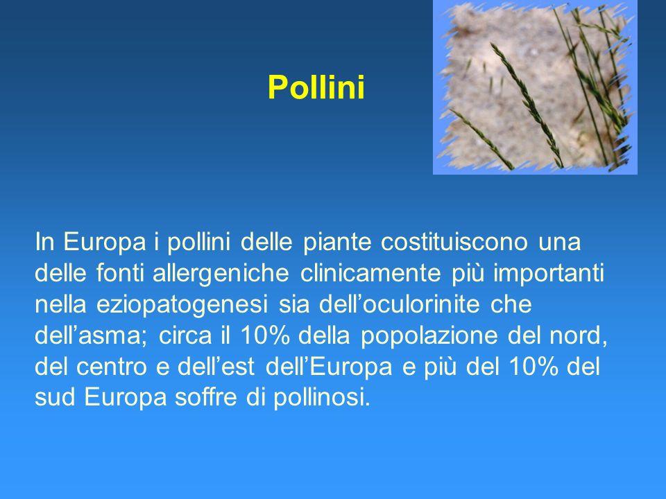 Pollini In Europa i pollini delle piante costituiscono una delle fonti allergeniche clinicamente più importanti nella eziopatogenesi sia delloculorinite che dellasma; circa il 10% della popolazione del nord, del centro e dellest dellEuropa e più del 10% del sud Europa soffre di pollinosi.