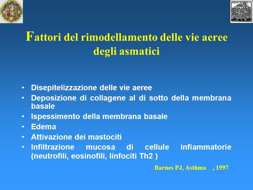 F attori del rimodellamento delle vie aeree degli asmatici Disepitelizzazione delle vie aeree Deposizione di collagene al di sotto della membrana basale Ispessimento della membrana basale Edema Attivazione dei mastociti Infiltrazione mucosa di cellule infiammatorie (neutrofili, eosinofili, linfociti Th2 ) Barnes PJ, Asthma, 1997