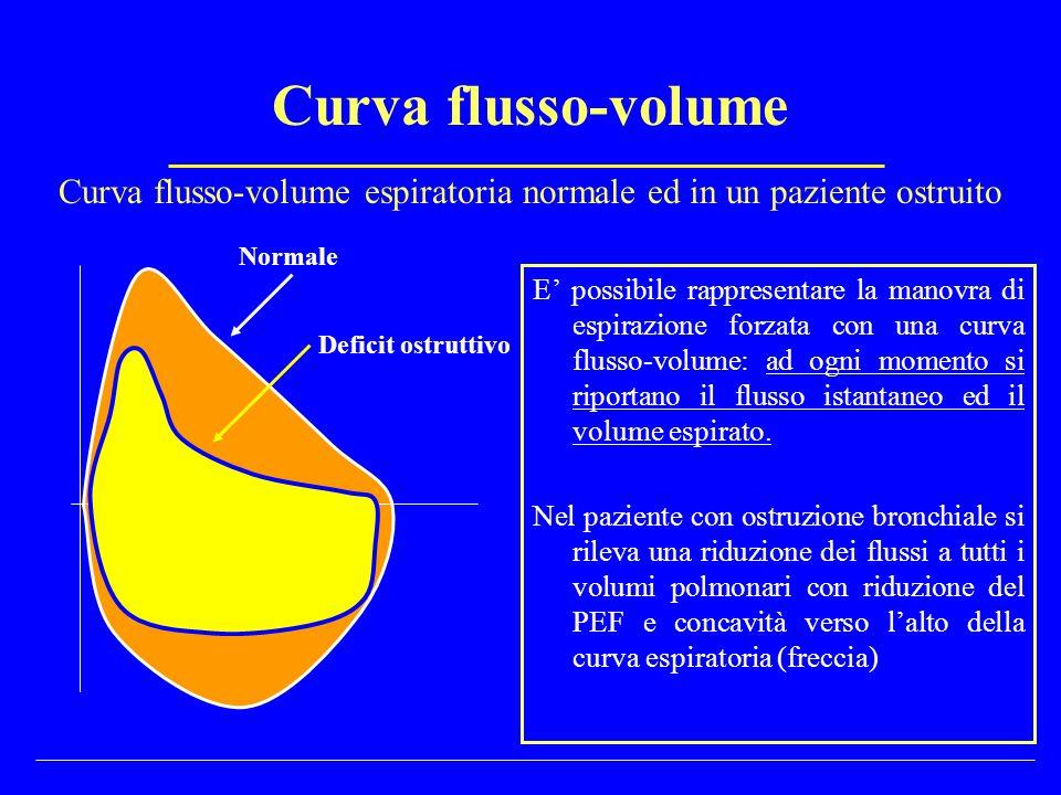 Volumi polmonari statici Capacità Funzionale residua (CFR) e Volume gassoso intratoracico (ITGV) Misurazione Test di diluizione dell elio Si collega il paziente, allo spirometro al termine di una espirazione lenta (volume polmonare = CFR).